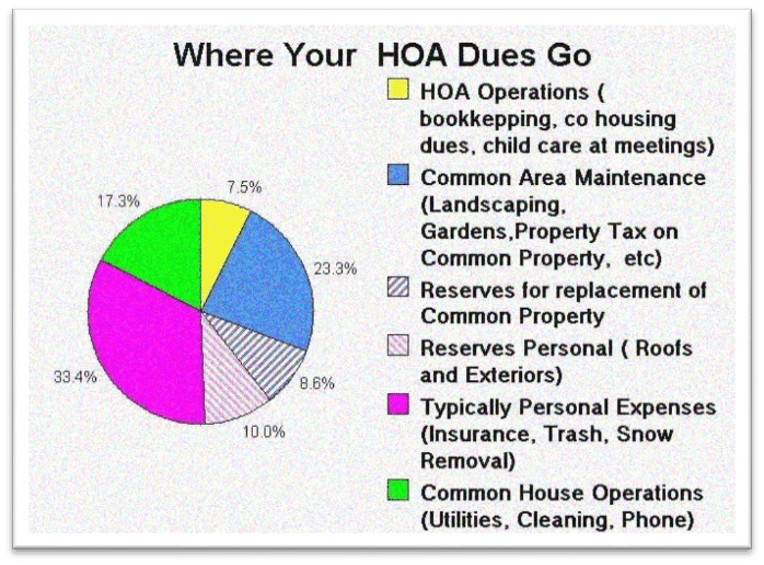 HOA annual budget